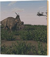 Achelousaurus Walking Amongst Swamp Wood Print