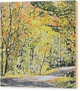 Acorn Lake 002 Wood Print