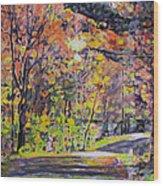 Acorn Lake Series 001 Wood Print