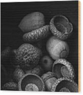 Acorns Black And White Wood Print