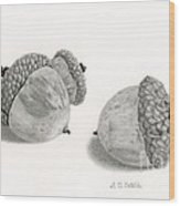 Acorns- Black And White Wood Print