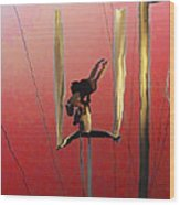 Acrobatic Aerial Artistry1 Wood Print by Anne Mott