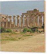 Acropolis Of Selinunte Wood Print