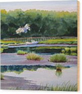 Across Duck Creek Wood Print