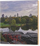 Across The Pond 2 - Central Park - Nyc Wood Print