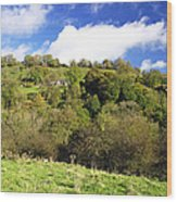 Across The Southern End Of Monk's Dale Wood Print