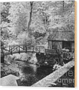 Across The Stream Wood Print