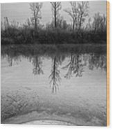 Across The Water Wood Print by Davorin Mance