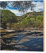 Acton California Wood Print