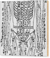 Acupuncture Chart Wood Print