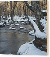 Adamsville Brook Wood Print