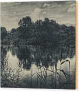 Adda River 3 Wood Print