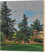 Addenbrooke Park Wood Print