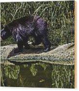 Adhd Bear Wood Print