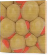 Adipose Tissue Wood Print