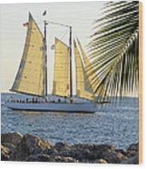 Sailing On The Adirondack In Key West Wood Print