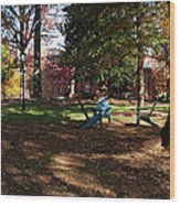 Adirondack Chairs 2 - Davidson College Wood Print