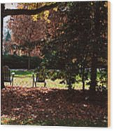 Adirondack Chairs-3 - Davidson College Wood Print