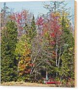 Adirondack Color II Wood Print