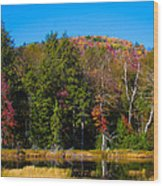 Adirondack Color IIi Wood Print