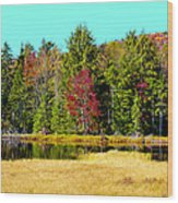 Adirondack Color Iv Wood Print