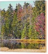 Adirondack Color Near Old Forge New York Wood Print