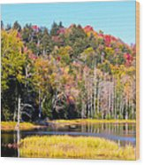 Adirondack Color V Wood Print