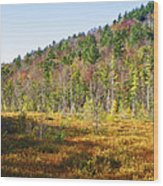Adirondack Color Vi Wood Print