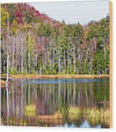 Adirondack Color Viii Wood Print