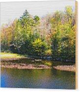 Adirondack Color X Wood Print