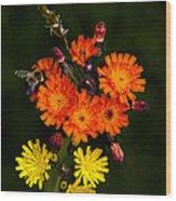 Adirondack Flowers Wood Print