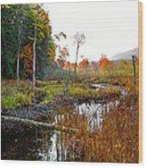 Adirondack Pond Iv Wood Print
