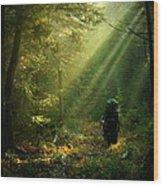 Adirondack Rapture Wood Print