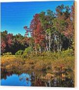 Adirondack Stream In Autumn Wood Print