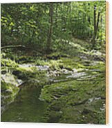 Adirondack Stream Wood Print