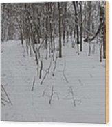 Adirondack Woods 3 Wood Print