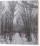 Adk Firetower 6 Vertical Wood Print