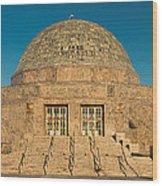 Adler Planetarium Chicago Il Wood Print
