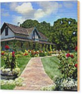 Adobe Alamo Pintado Rideau Vineyards Wood Print