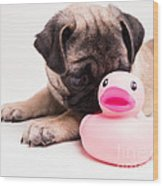 Adorable Pug Puppy With Pink Rubber Ducky Wood Print