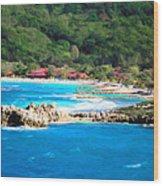 Adrenaline Beach - Cezanne II Wood Print
