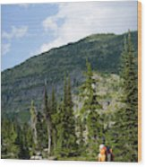 Adult Woman Hiking Through An Alpine Wood Print