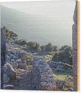 Aegothena Fortification Wood Print