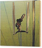 Aerial Acrobatic Artistry2  Wood Print by Anne Mott