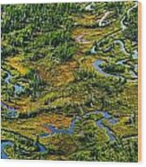 Aerial Of A Wetland, Over Northern Wood Print