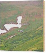 Aerial View Of Alaskan Landscape Wood Print