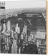 Aerial View Of Central Park Wood Print