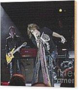 Aerosmith-steven Tyler-00160 Wood Print