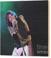 Aerosmith - Steven Tyler -dsc00139-1 Wood Print