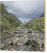 Afon Nant Peris Wood Print